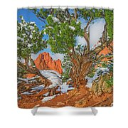 The Ferruginous Earth Of The Rocky Mountain West Shower Curtain