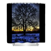 The Field Tree Hdr Shower Curtain