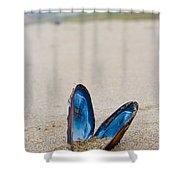 The Final Show Shower Curtain