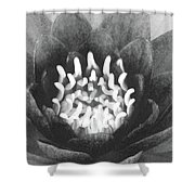 The Fire Inside - Water Lily 02 - Bw Shower Curtain