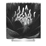 The Fire Inside - Water Lily - Bw Shower Curtain