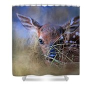 The First Fawn Shower Curtain