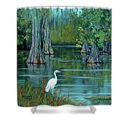 The Fisherman Shower Curtain by Dianne Parks