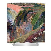 The Flageolet Player On The Cliff Shower Curtain