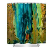 The Flair Of The Flame Abstract Shower Curtain