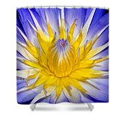 The Flame Of Beauty Spca1 Shower Curtain