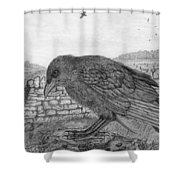 The Fledgling Shower Curtain