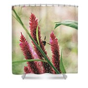 The Flight Of The Bee Shower Curtain