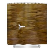 The Floating Feather Shower Curtain