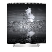 The Florida Everglades Shower Curtain