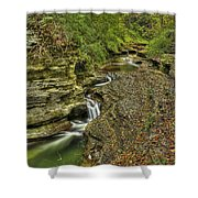 The Flow Shower Curtain by Evelina Kremsdorf
