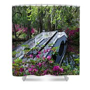 The Flower Bridge Shower Curtain