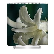 The Flower Of Dews 2 Shower Curtain