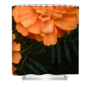 The Flower Series Shower Curtain