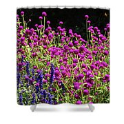 The Flowers And The Bees Shower Curtain