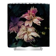 The Flowers Of Romance. Shower Curtain