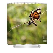 The Flutterby Shower Curtain