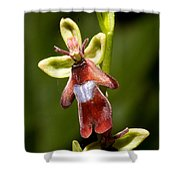 The Fly Orchid Shower Curtain