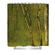 The Forest At Pontaubert, 1881 Shower Curtain