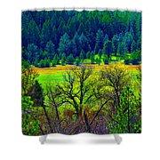 The Forest Echoes With Laughter 2 Shower Curtain