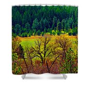 The Forest Echoes With Laughter Shower Curtain