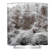 The Forest Hush Shower Curtain