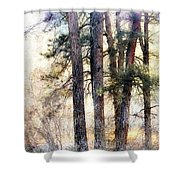 The Forest Speaks Shower Curtain