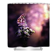 The Forest Throne Shower Curtain