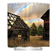 The Forgotten Dreams 10 Shower Curtain