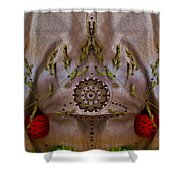 The Fountain Of Life Shower Curtain