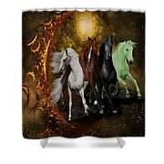 The Four Horses Of The Apocalypse Shower Curtain