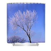 The Frost Like Ashes Shower Curtain