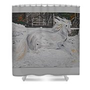 The Gallop Shower Curtain