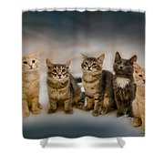The Gang Shower Curtain