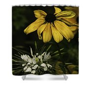The Gardens 3 Shower Curtain