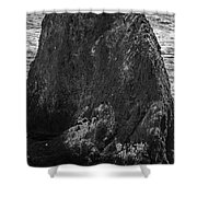 The Gathering- Bw Shower Curtain