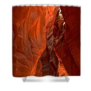 The Giant Room Shower Curtain