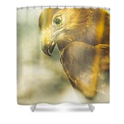 The Glass Case Eagle Shower Curtain