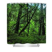 The Glorious Green Shower Curtain
