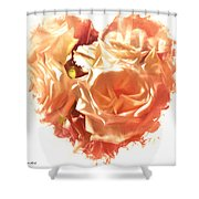 The Glow Of Roses Shower Curtain