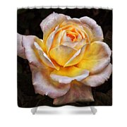 The Glowing Rose Shower Curtain