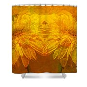 The Gold Mirror Shower Curtain