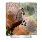 The Golden Horse Shower Curtain