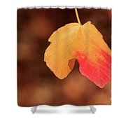 The Golden Leaf Of Fall Shower Curtain by Tracy Hall