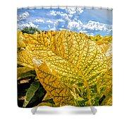 The Golden Leaf Shower Curtain