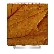 The Golden Time Shower Curtain