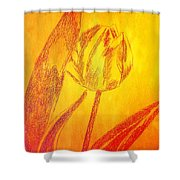 The Golden Tulip Shower Curtain