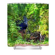 The Gorge In The Wood Shower Curtain