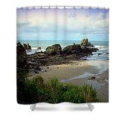 The Gorgeous Northwest Pacific Coastline Shower Curtain