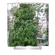 The Grand Magnolia Shower Curtain